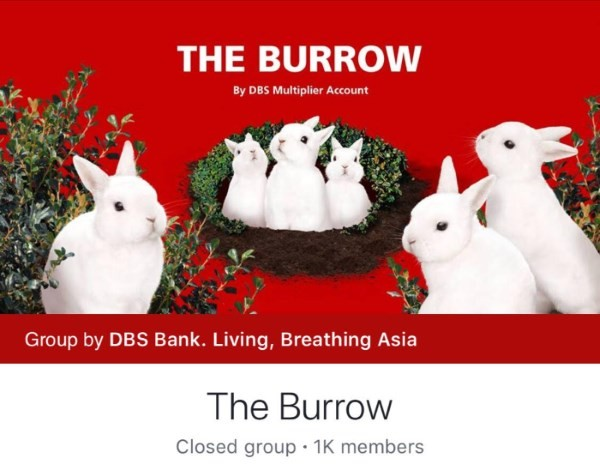 Join The Burrow To Learn Secret Financial Tips and Tricks